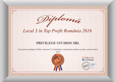 Diploma top profit